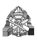 IDS המרכז לביטחון אבטחה וחקירות