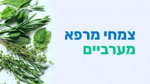 קורס צמחי מרפא מערביים